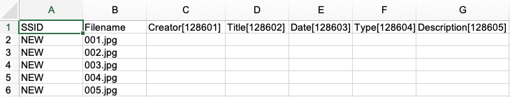 Example_of_Excel_sheet_with_NEW_inputted_in_SSID_column.png